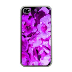 Dsc 01176665652 Apple Iphone 4 Case (clear) by timelessartoncanvas