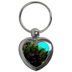 Dsc 01677787 Key Chains (heart)  by timelessartoncanvas