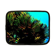 Dsc 01677787 Netbook Case (small)  by timelessartoncanvas