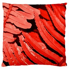 Dsc 0088 Large Flano Cushion Cases (two Sides)  by timelessartoncanvas