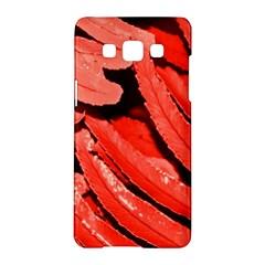 Dsc 0088 Samsung Galaxy A5 Hardshell Case  by timelessartoncanvas