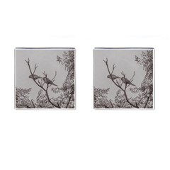 Couple Of Parrots In The Top Of A Tree Cufflinks (square) by dflcprints