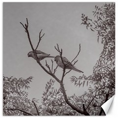 Couple Of Parrots In The Top Of A Tree Canvas 12  X 12   by dflcprints
