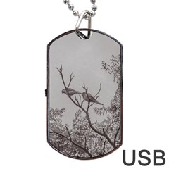 Couple Of Parrots In The Top Of A Tree Dog Tag Usb Flash (one Side) by dflcprints