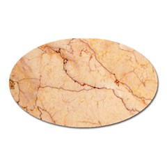 Stone Floor Marble Oval Magnet by essentialimage
