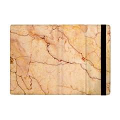 Stone Floor Marble Apple Ipad Mini Flip Case by essentialimage