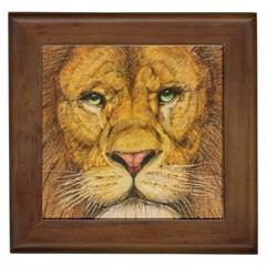 Regal Lion Drawing Framed Tiles by KentChua