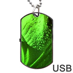 Green And Powerful Dog Tag Usb Flash (one Side) by timelessartoncanvas