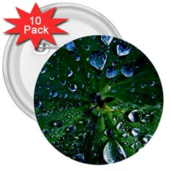 Morning Dew 3  Buttons (10 Pack)