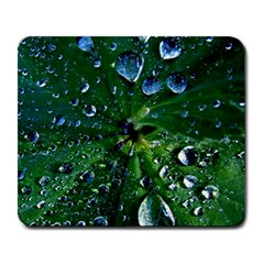 Morning Dew Large Mousepads