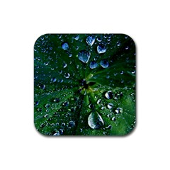 Morning Dew Rubber Coaster (square)