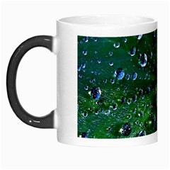 Morning Dew Morph Mugs by Costasonlineshop
