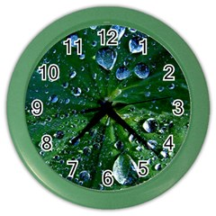 Morning Dew Color Wall Clocks