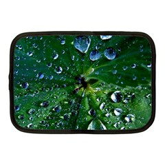 Morning Dew Netbook Case (medium)