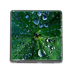 Morning Dew Memory Card Reader (square)