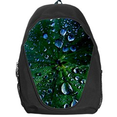Morning Dew Backpack Bag