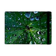 Morning Dew Apple Ipad Mini Flip Case