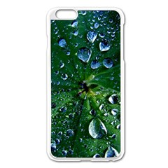 Morning Dew Apple Iphone 6 Plus/6s Plus Enamel White Case by Costasonlineshop