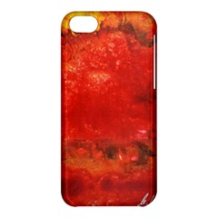 Stone Wall Apple Iphone 5c Hardshell Case by timelessartoncanvas