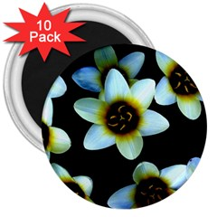 Light Blue Flowers On A Black Background 3  Magnets (10 Pack)  by Costasonlineshop