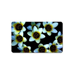 Light Blue Flowers On A Black Background Magnet (name Card) by Costasonlineshop