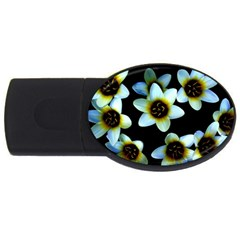 Light Blue Flowers On A Black Background Usb Flash Drive Oval (4 Gb)  by Costasonlineshop
