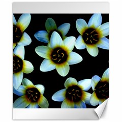 Light Blue Flowers On A Black Background Canvas 16  X 20