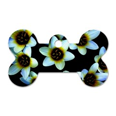 Light Blue Flowers On A Black Background Dog Tag Bone (two Sides)