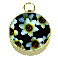 Light Blue Flowers On A Black Background Gold Compasses by Costasonlineshop