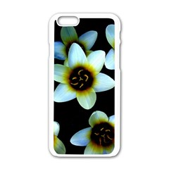 Light Blue Flowers On A Black Background Apple Iphone 6/6s White Enamel Case by Costasonlineshop