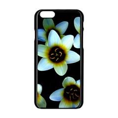 Light Blue Flowers On A Black Background Apple Iphone 6/6s Black Enamel Case