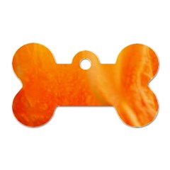 Floating Orange And Yellow Dog Tag Bone (one Side) by timelessartoncanvas