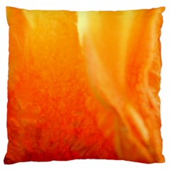 Floating Orange And Yellow Large Cushion Cases (two Sides)  by timelessartoncanvas