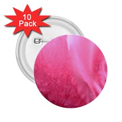 Floating Pink 2 25  Buttons (10 Pack)  by timelessartoncanvas