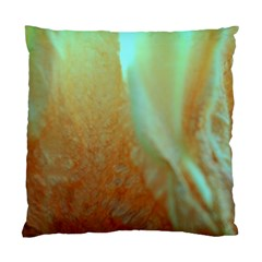 Floating Teal And Orange Peach Standard Cushion Cases (two Sides)  by timelessartoncanvas