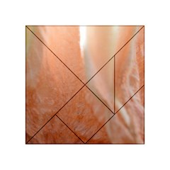 Floating Subdued Peach Acrylic Tangram Puzzle (4  X 4 ) by timelessartoncanvas