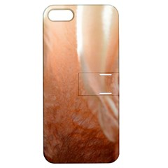 Floating Subdued Peach Apple Iphone 5 Hardshell Case With Stand by timelessartoncanvas