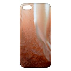 Floating Subdued Peach Iphone 5s Premium Hardshell Case by timelessartoncanvas