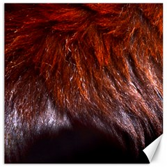 Red Hair Canvas 20  X 20   by timelessartoncanvas