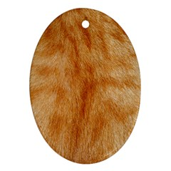 Orange Fur 2 Oval Ornament (two Sides) by timelessartoncanvas