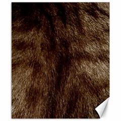 Silber Tiger Fur Canvas 8  X 10  by timelessartoncanvas