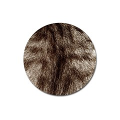 Black And White Silver Tiger Fur Magnet 3  (round) by timelessartoncanvas