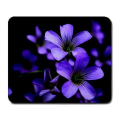 Springtime Flower Design Large Mousepads by timelessartoncanvas