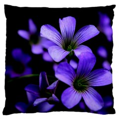 Springtime Flower Design Large Flano Cushion Cases (two Sides)  by timelessartoncanvas
