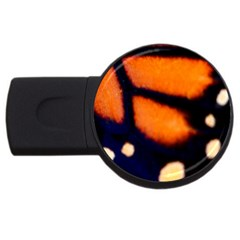 Butterfly Design 2 Usb Flash Drive Round (2 Gb)  by timelessartoncanvas