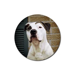 Pit Bull T Bone 2015/05/25 Rubber Coaster (round)  by ButThePitBull