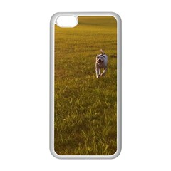 Pit Bull T Bone Apple Iphone 5c Seamless Case (white) by ButThePitBull