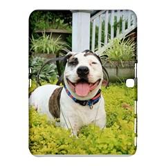 Pit Bull T Bone Samsung Galaxy Tab 4 (10 1 ) Hardshell Case  by ButThePitBull