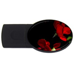 Roses 1 Usb Flash Drive Oval (2 Gb)  by timelessartoncanvas
