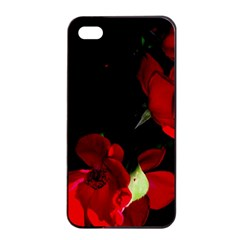 Roses 1 Apple Iphone 4/4s Seamless Case (black) by timelessartoncanvas